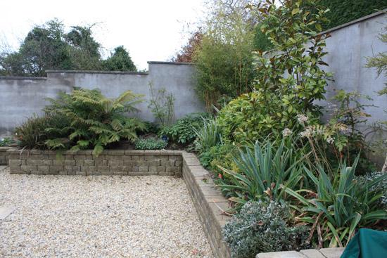 shankill_garden_design_10
